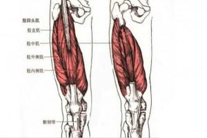 每天走一万多步膝关节答应吗