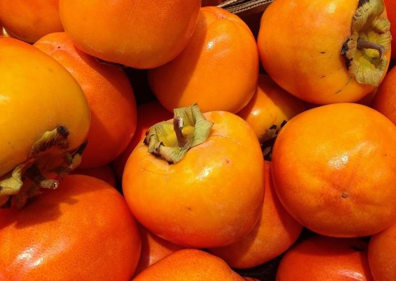 柿子与那些食物相克介绍几种与柿子相克的食物